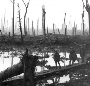 Chateau Wood, Ypres, 1917